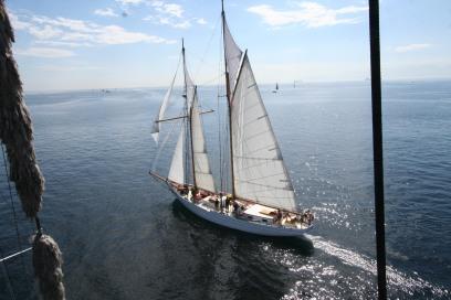 Alcyon, a beautiful schooner.