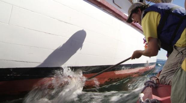 Cap'n Dan scrubbing ADVENTURESS