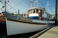 boats vic fest 2